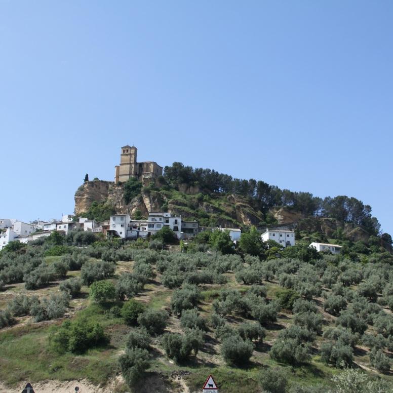 Montefrío entre olivos